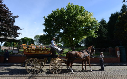 Horse carriage driving in the Town