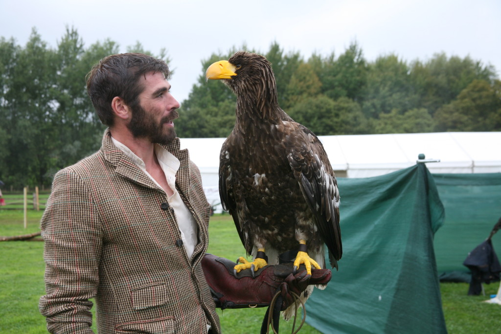Bird of prey at Beamish Agricultural Show
